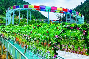 广东省wu华xian双龙山景区